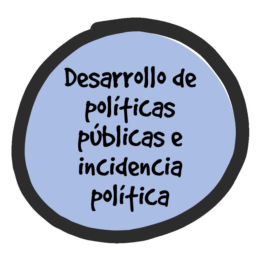 Desarrollo de Políticas Públicas e Incidencia Política